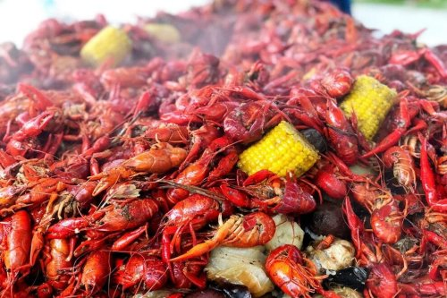Plan your perfect Southern trip around these seafood seasons