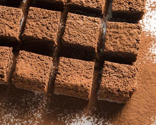 Italian Flourless Chocolate Torta