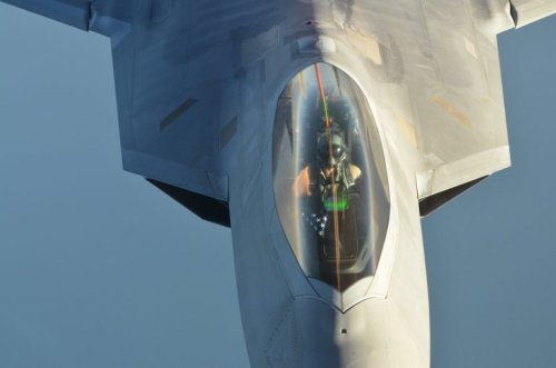 The F-22 Stealth Fighter's Greatest Enemy: A Swarm of Honey Bees?