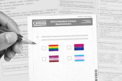 The Census Bureau's first ever data on LGBTQ+ people indicates deep disparities
