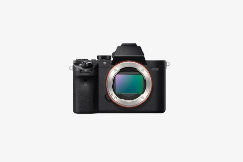 Sony Systemkameras: Welche Sony Alpha Kamera ist die beste Wahl?