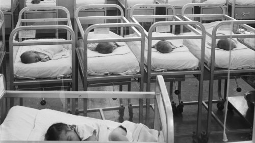 How Many People Are Still Alive From the Year You Were Born
