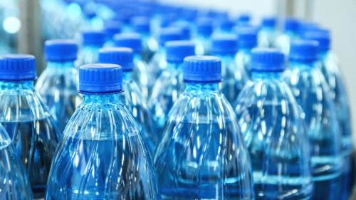 This Organization Ranks No. 1 Investing in Plastic Waste
