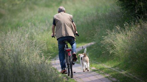 Nordhorn: Zuerst die Radfahrer – die großen Pläne einer Fahrradstadt