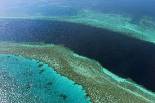 Australien verhindert Einstufung des Great Barrier Reef als gefährdetes Welterbe