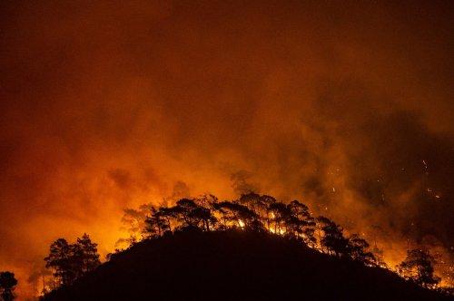 EU schickt Löschflugzeuge in Waldbrandgebiete in der Türkei