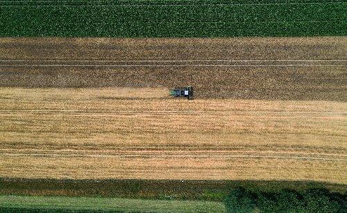 Bundestag stimmt über Agrarpolitik und Verbraucherrechte ab