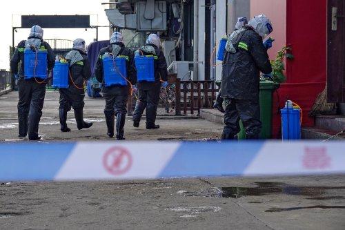 Lockdown in Teilen Chinas wegen des größten Corona-Infektionsherds seit Monaten