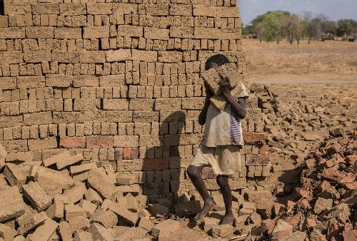 Child labour swells for first time in two decades : UN