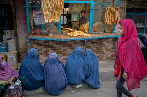 'This is our homeland' : women plead for basic rights in Afghanistan