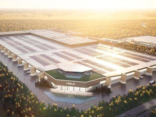 Wegen Gigafactory in Grünheide: Elon Musk rastet gegenüber Umweltverbände aus