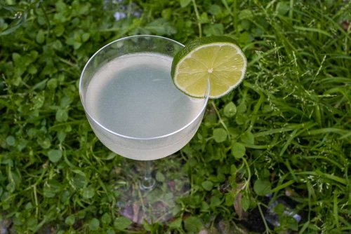 Spring into the Weekend with a Gin Giimlet