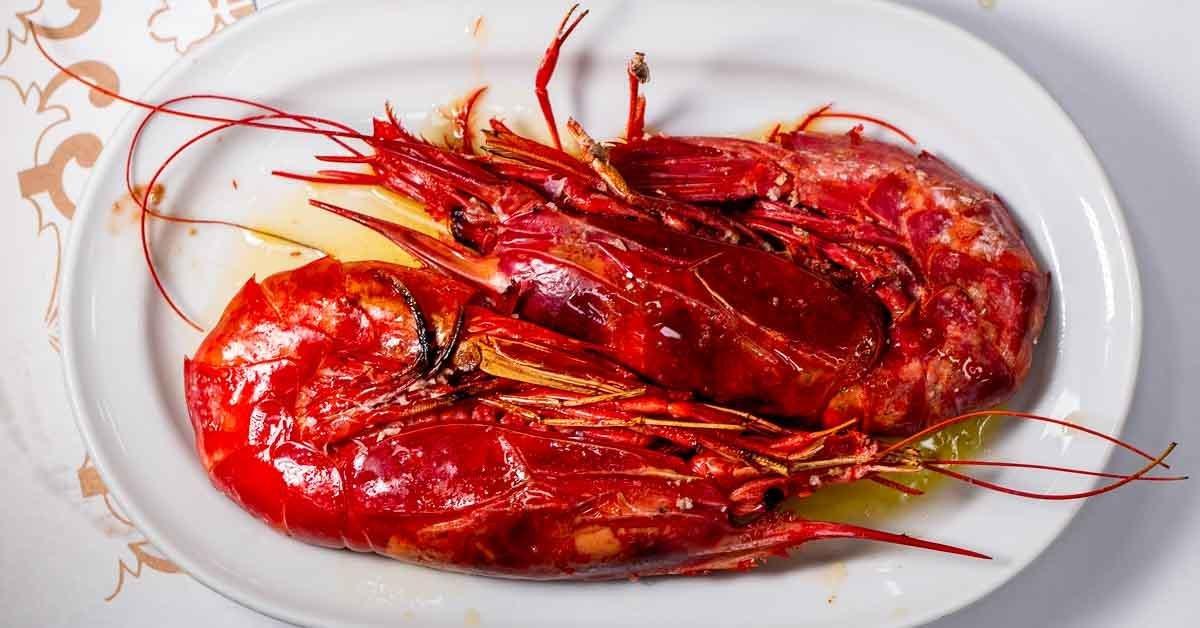 Lisbon Food Guide – The Best Lisbon Restaurants, Cafes and Bars