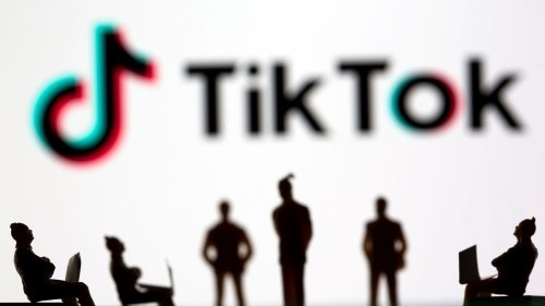 Social media giant TikTok sued by former children's commissioner over 'shady' data collection policy