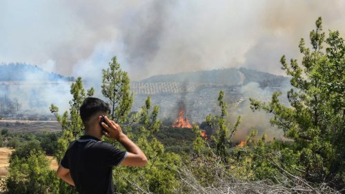 Wildfires and deaths across southeast Europe amid most severe heatwave in decades