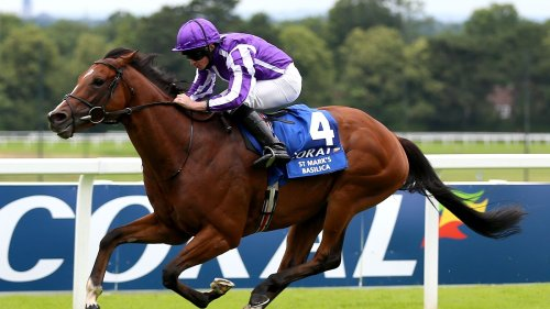 St Mark's Basilica: Aidan O'Brien giving stable star time to recover with Arc and retirement decisions looming