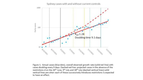 NSW daily COVID cases could pass 500 by end of week, new modelling predicts