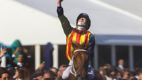 Watch Nature Strip hold on to win the $15 MILLION Everest and etch his name in horse racing history