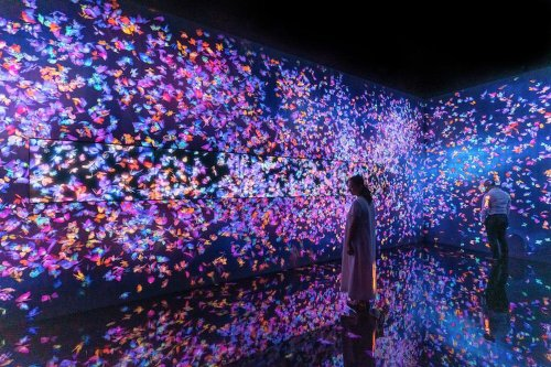 Asian Art Museum's interactive TeamLab exhibition is a funhouse of the future