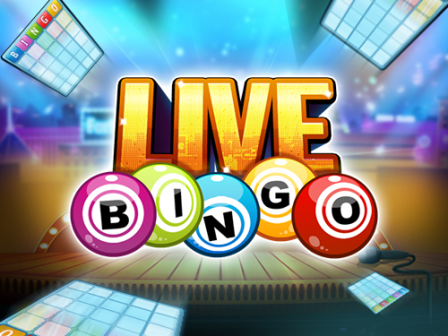 Live Bingo Online - Aa Alien Blogs