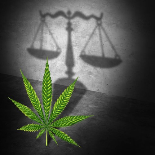 The Unveiling Of The CAOA: How The Senate Proposes to Regulate Marijuana