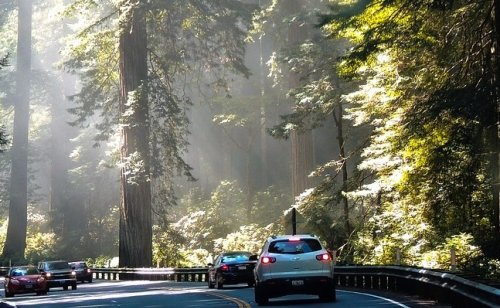10 family-friendly road trip stops