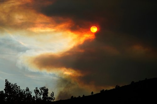 Skies went dark: Historians pinpoint the very 'worst year' ever to be alive
