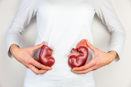Common Complications of Polycystic Kidney Disease (PKD)