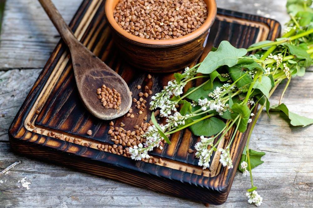 The Incredible Health Benefits of Buckwheat - ActiveBeat