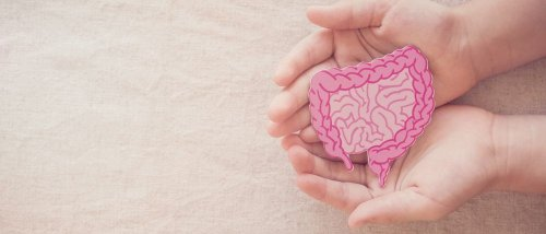 Facts to Help You Get to Know Your Gut