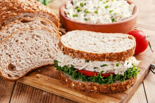 Best Lunches to Feed Your Children