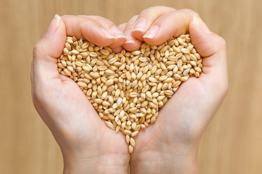 Incredible Health Benefits of Barley