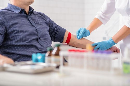 A Complete Guide to Understanding Your Bloodwork Results