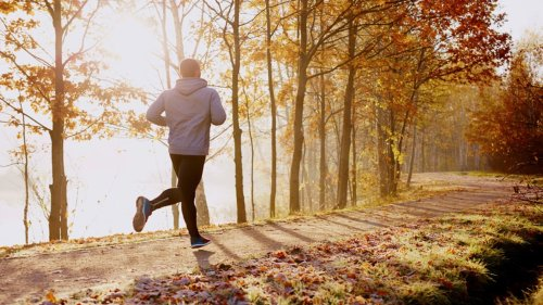 How to Improve Your Health and Wellness in 4 Steps