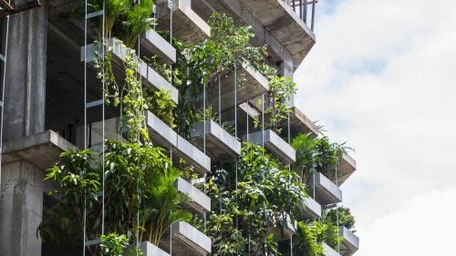 Ideen zur Green City: Ausstellung in Düsseldorf zeigt, wie unsere Städte grüner werden | AD Magazin