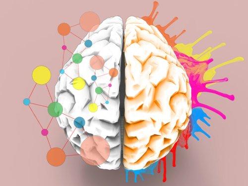 Neuroscience cover image