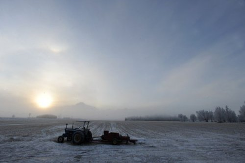 Dunleavy administration proposes millions for biggest Alaska farming project in decades