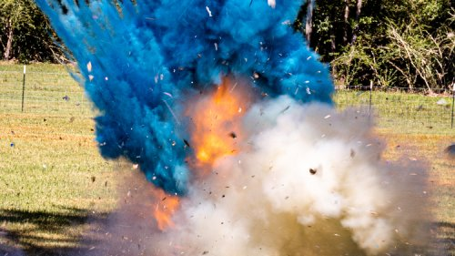 Punishment Follows Catastrophic Gender Reveal Party