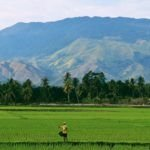 SupPlant and ClimaCell want to make precision agtech affordable for Asia's poorest farmers