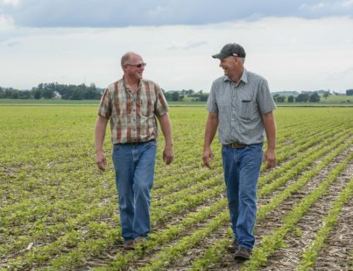 Farmers worried by possible new capital gains, estate tax liability