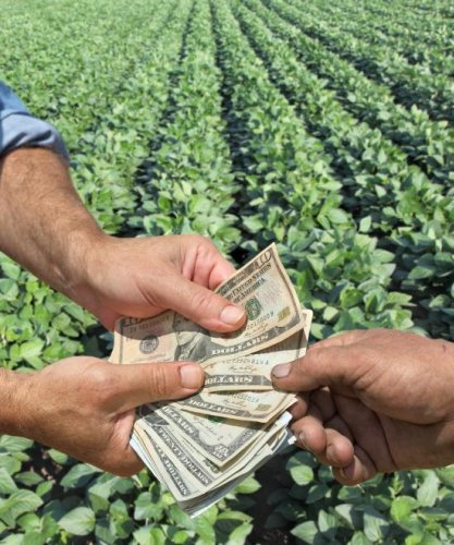 Operating loans drive decline in ag lending