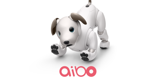 aibo is full of charm and infectious energy