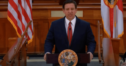 Gov. DeSantis Holds Second Roundtable with Public Health Experts
