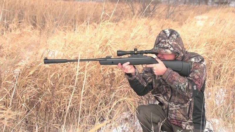 10 Celebrities Who Should Consider a Career in best break barrel air rifle 2021 - cover