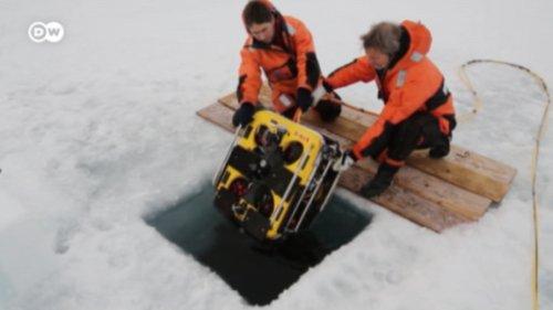 Arktisforscher warnen vor unaufhaltbaren Klimafolgen