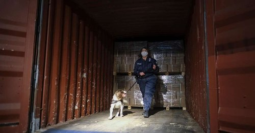 Colombia's cartels target Europe with cocaine, corruption and torture