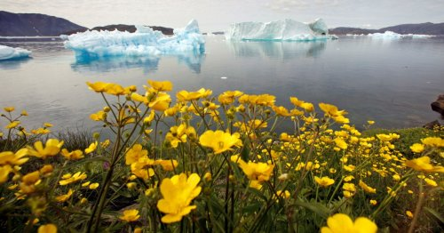 Thousands of scientists warn climate tipping points 'imminent'