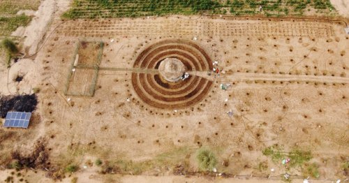 Senegalese plant circular gardens in Green Wall defence
