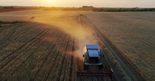 The Price of Progress: How safe is European food production?