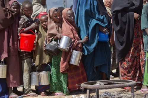 Millions staring at famine as food insecurity soars: Report
